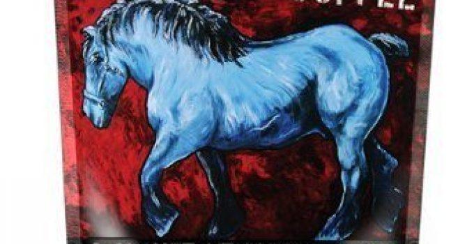 Dark Roast, Blue Horse Kona Coffee