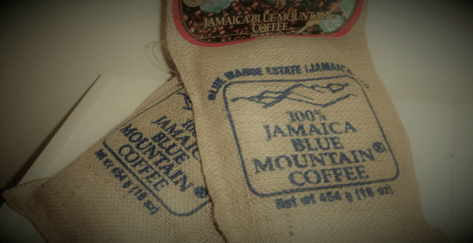 The Beginner's Guide to Jamaican Blue Mountain Coffee